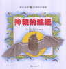 Wonderful Little Animals: Beautiful Bats 亲近自然-神秘的蝙蝠