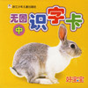Chinese Flash Card (Book II)好宝宝无图识字卡(中)