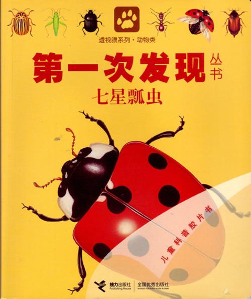 First Discovery: Ladybug 第一次发现丛书-七星瓢虫
