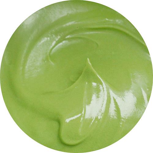 TCC Succulent Green  Gel Icing Color 2oz