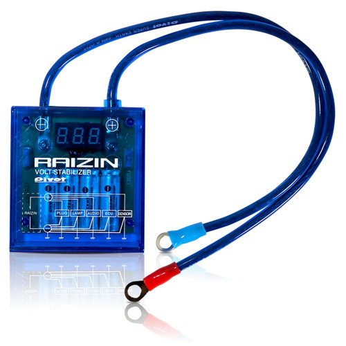 Voltage Performance Chip Battery Module Raizin