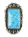Large Water Web Kingman Turquoise Ring Size 7 1/2 (RG4997)