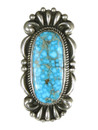 Large Water Web Kingman Turquoise Ring Size 7 by Albert Jake (RG4998)