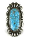 Large Water Web Kingman Turquoise Ring Size 7 by Albert Jake (RG4998)
