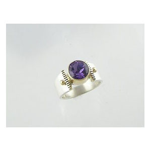 14k Gold & Silver Amethyst Ring Size 6 (RG0700)