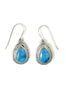 Sonoran Turquoise Earrings by Jake Sampson (ER5223)