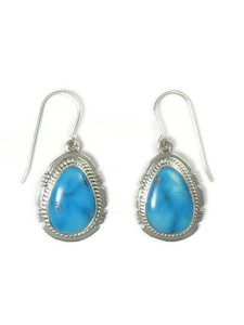 Sonoran Turquoise Earrings by Jake Sampson (ER5226)