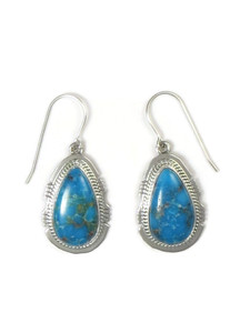 Sonoran Turquoise Earrings by Jake Sampson (ER5227)