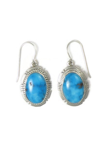 Sonoran Turquoise Earrings by Jake Sampson (ER5230)
