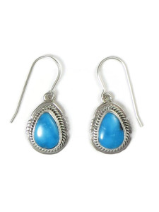 Sonoran Turquoise Earrings by Jake Sampson (ER5234)