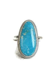 Kingman Turquoise Ring Size 9 by Jake Sampson (RG4400)