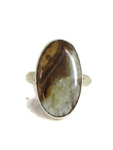 Fossilized Mammoth Tooth Ivory Ring Size 9 by Lyle Piaso (RG4518)