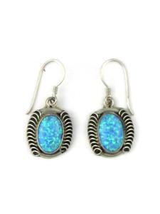 Silver Blue Opal Dangle Earrings (ER5372)