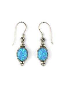 Silver Blue Opal Dangle Earrings (ER5373)