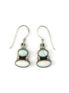 Silver Opal Dangle Earrings (ER5374)