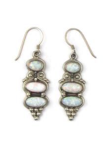 Silver Opal Dangle Earrings (ER5381)
