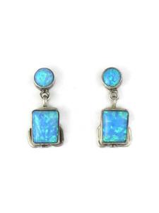 Silver Blue Opal Post Dangle Earrings (ER5385)