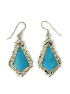 Sleeping Beauty Turquoise Dangle Earrings (ER5409)