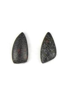 Pietersite Post Earrings (ER5411)