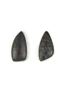 Pietersite Post Earrings (ER5411)