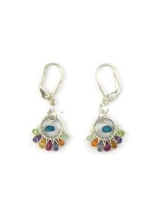 Multi Gemstone Earrings with Lever Backs (ER7301)