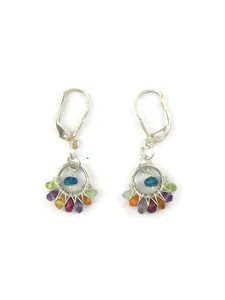 Multi Gemstone Earrings with Lever Backs (ER7301)