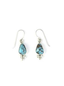 Dry Creek Turquoise Earrings (ER5455)