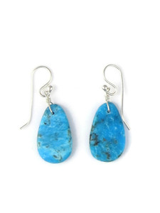 Turquoise Slab Earrings (ER5485)