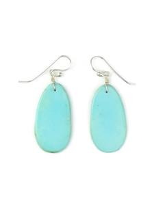 Turquoise Slab Earrings (ER5041)