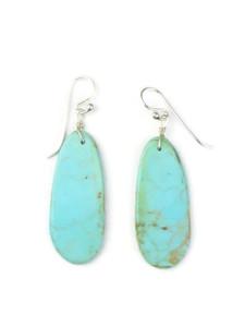 Turquoise Slab Earrings (ER5047)