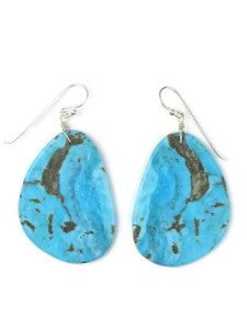 Turquoise Slab Earrings (ER5048)