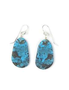 Turquoise Slab Earrings (ER5049)