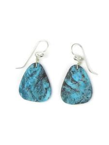 Turquoise Slab Earrings (ER5054)