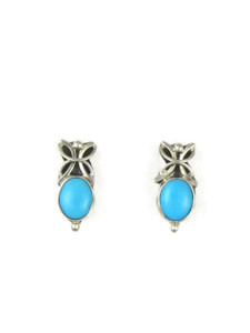 Sleeping Beauty Turquoise Post Earrings (ER5605)