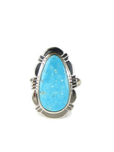 Blue Bird Turquoise Ring Size 7 by Phillip Sanchez (RG5091)