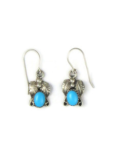 Sleeping Beauty Turquoise Earrings (ER5618)