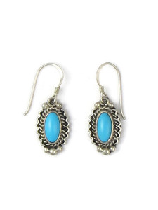 Sleeping Beauty Turquoise Dangle Earrings (ER5619)