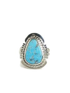 Kingman Turquoise Ring Size 5 (RG5102)