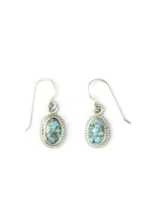 Dry Creek Turquoise Earrings by Shirley Henry (ER5671)