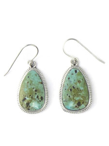 Dry Creek Turquoise Earrings by Burt Francisco (ER5715)