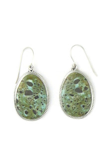 Dry Creek Turquoise Earrings by Burt Francisco (ER5716)