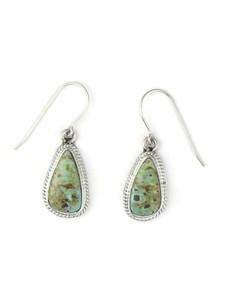 Dry Creek Turquoise Earrings by Burt Francisco (ER5719)