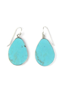 Silver Turquoise Slab Earrings (ER5800)