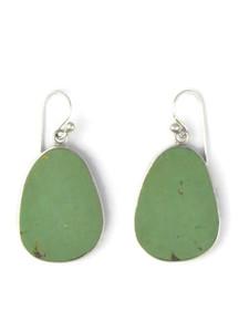Silver Turquoise Slab Earrings (ER5802)