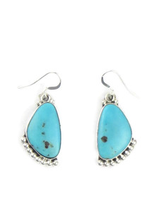 Kingman Turquoise Earrings (ER5822)