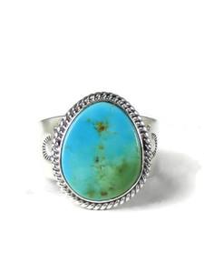 Kingman Turquoise Ring Size 12 by John Nelson (RG5160)