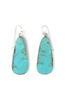 Silver Turquoise Slab Earrings (ER5860)