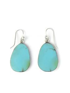 Silver Turquoise Slab Earrings (ER5862)