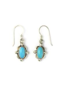 Sleeping Beauty Turquoise Earrings (ER5898)