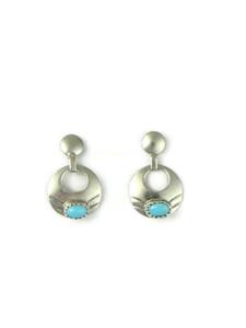 Sleeping Beauty Turquoise Post Earrings (ER5900)